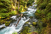 Series of Rapids on the McKenzie River