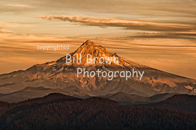 Mt Hood from Larch Mountain