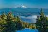 Mt Jefferson from Timberline Lodge on Mt Hood