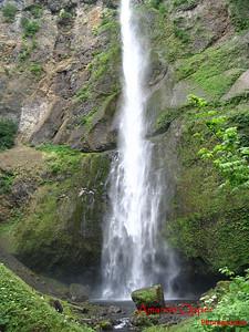 Multnomah Falls from below