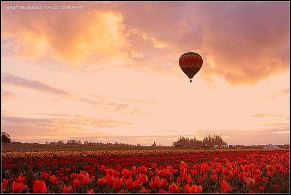 Oregon Scenic Prints