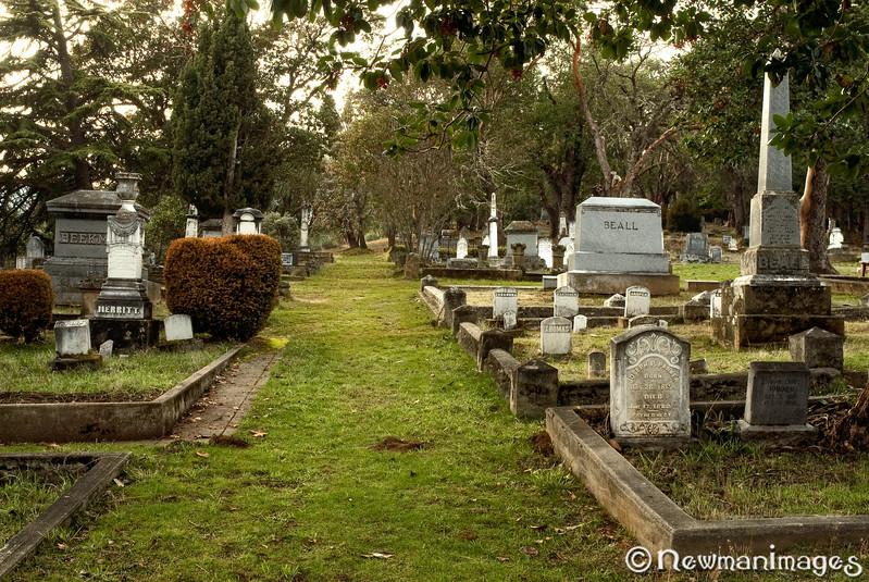 Jacksonville Cemetery Wide