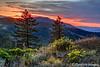 Siskiyou Sunset