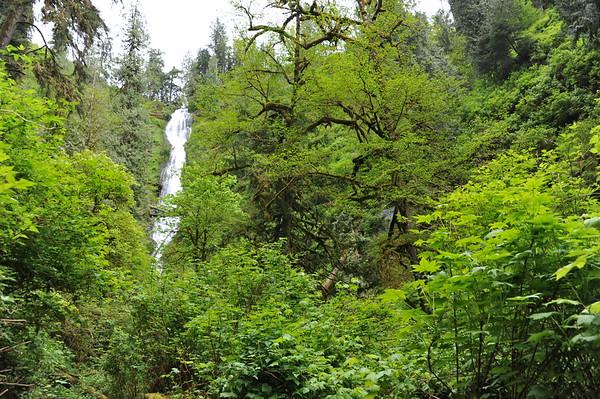 Munson Creek Falls State Natural Area
