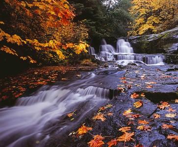 Alsea Falls, Coast Range
