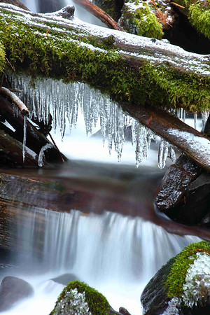 Icicles on Whale Creek