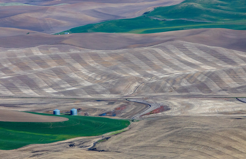 Palouse Farming ( view from Steptoe Butte, 3612 elevation )