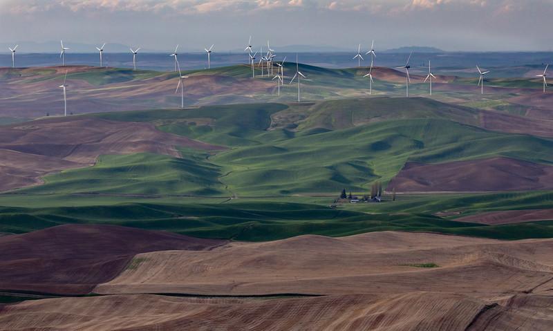 Palouse windmill farm