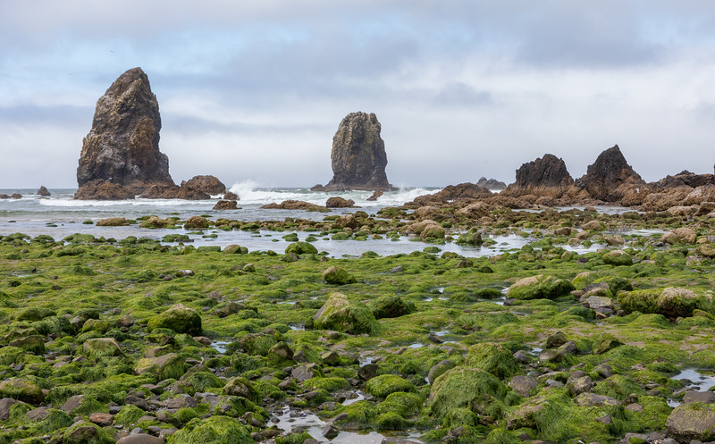 Low tide adjacent to Haystack Rock
