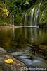 Leaf on Rock at Mossbrae Falls