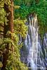 Burney Falls Cascade