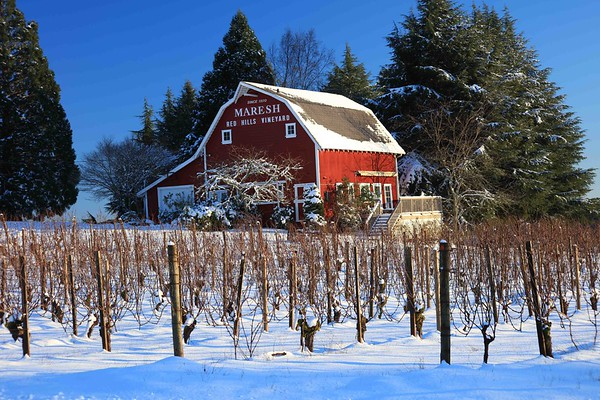 Red Hills Vineyard barn, Dundee Hills