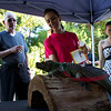 Guests interact with education animals at Zoolala 2013<br /> Photo Credit: McDermott Studios LLC