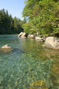 The Smith River in Jedediah Smith Redwoods State Park. This was our swimming hole for the afternoon. The weather was perfect and the water refreshing. As with many of our stops along our road trip, we had this entire beach to ourselves for most of the afternoon.