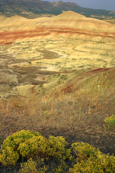 Looking East towards the Painted Hills at sunset.