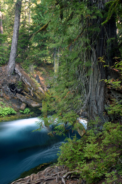 Deep Blue River...We drove from Clear Lake to the Sahalie Falls lookout and parked for the night to sleep in the Excursion. The next morning, we brewed up some hot chocolate and hit the trail. Within 2 minutes, we were at the beautiful Sahalie Falls. After walking the 2 mile loop, I decided that the McKenzie River is one of Oregon's finest rivers.