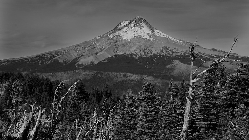 Mount Hood From Lookout Moumtain