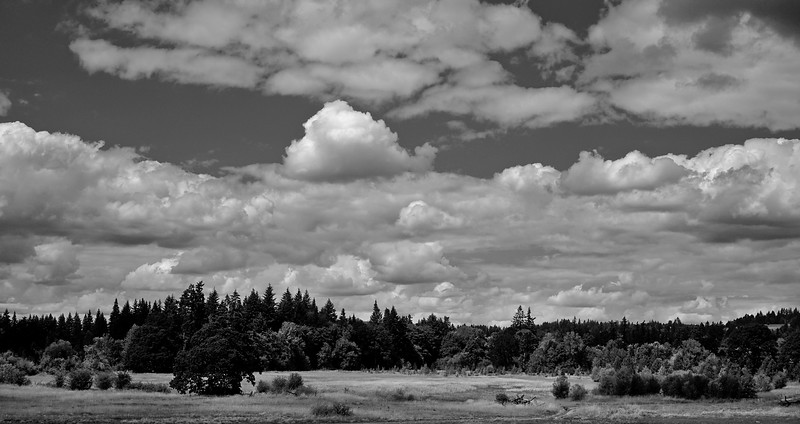 Tualatin River National Wildlife Refuge