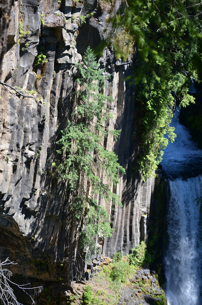 Toketee Falls. The wall is volcanic basalt.