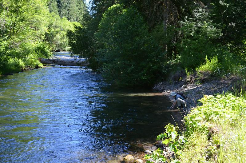 Hiking in Umpqua State Park along the Umpqua River