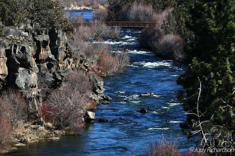 Tumalo Creek with scenic bridge
