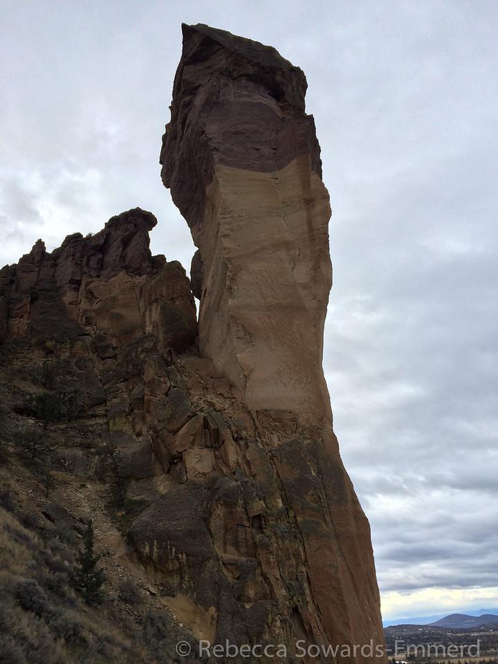 Monkey Face from below