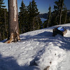 But unfortunately the snow was even icier than it had been near Mt Bachelor.