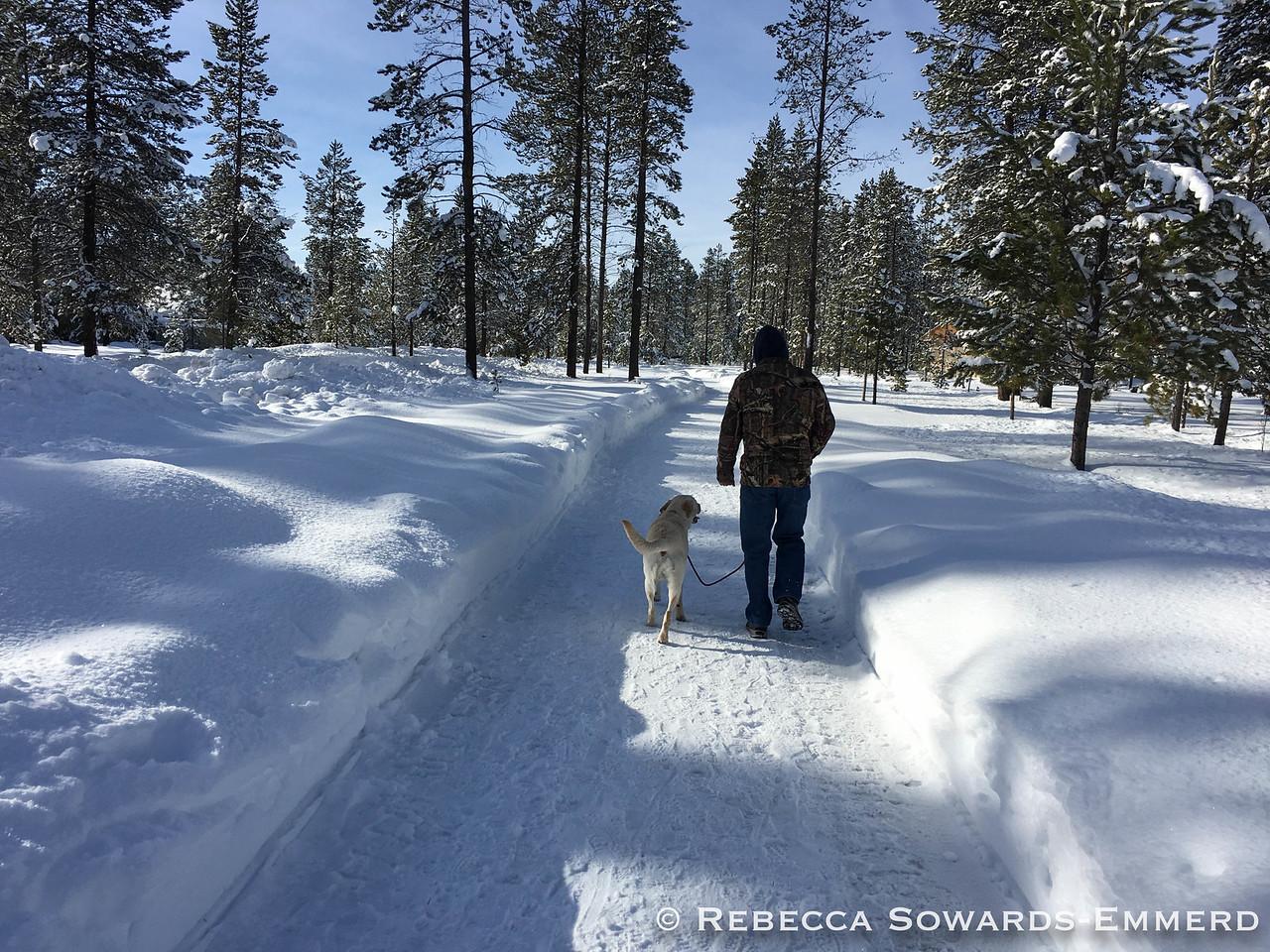 Thor still loved the snow!