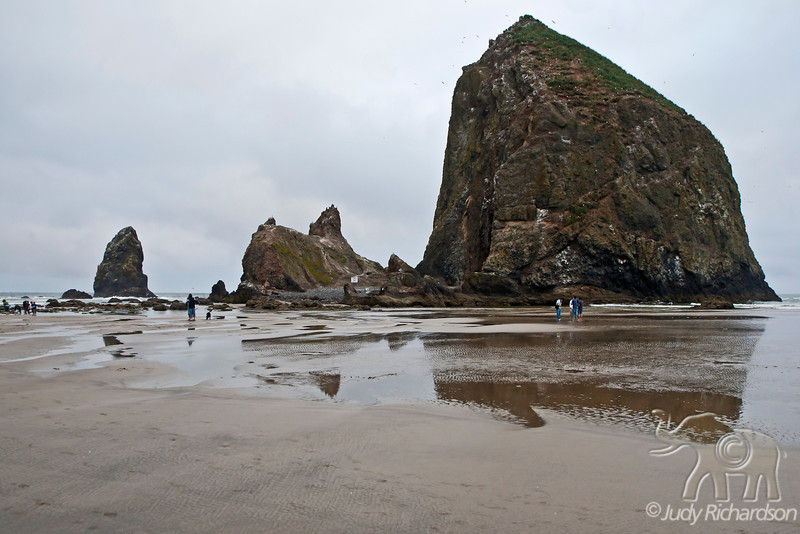 Haystack Rock at Cannon Beach, Oregon during low tide.