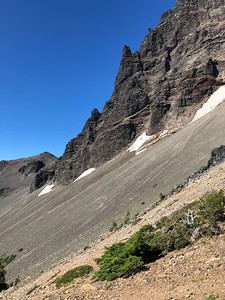 Mountain goats munching lunch on the slope below Three Fingered Jack