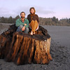 Redwood driftwood at sunset