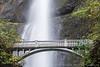 Benson Bridge & Multnomah Falls