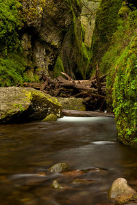 Oneonta Gorge.  It's buried under a log jam at the moment.