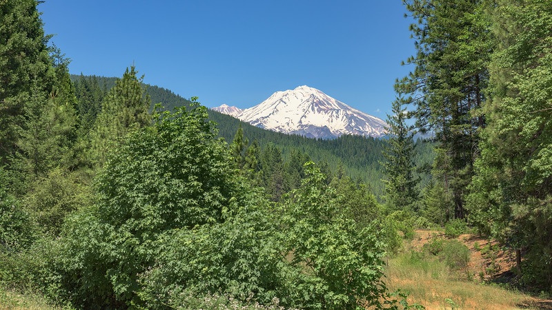 Mount Shasta on the Way to Crater Lake