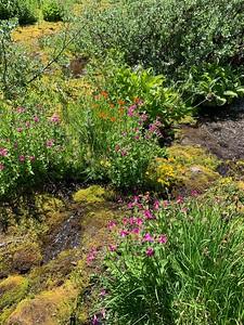 Lost Creek, Paradise Park