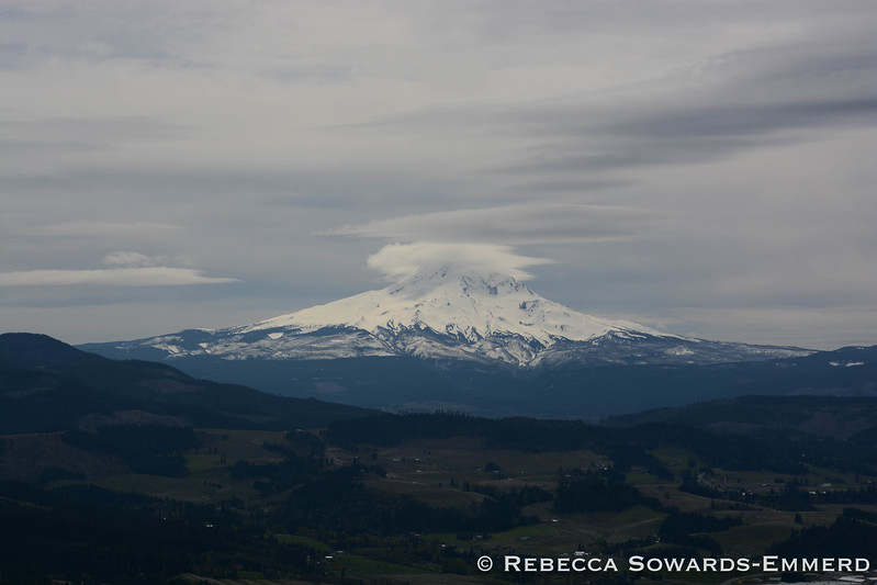 Mt Hood from Hood River Mountain
