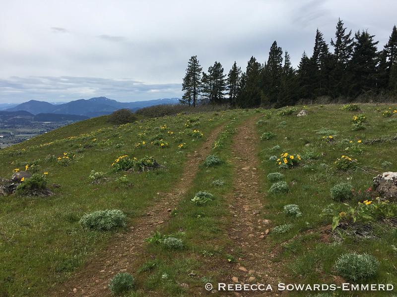Nice hiking along this ridge!