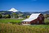A farm barn with the snow-capped peak of Mt. Hood near Parkdale, Oregon, USA.