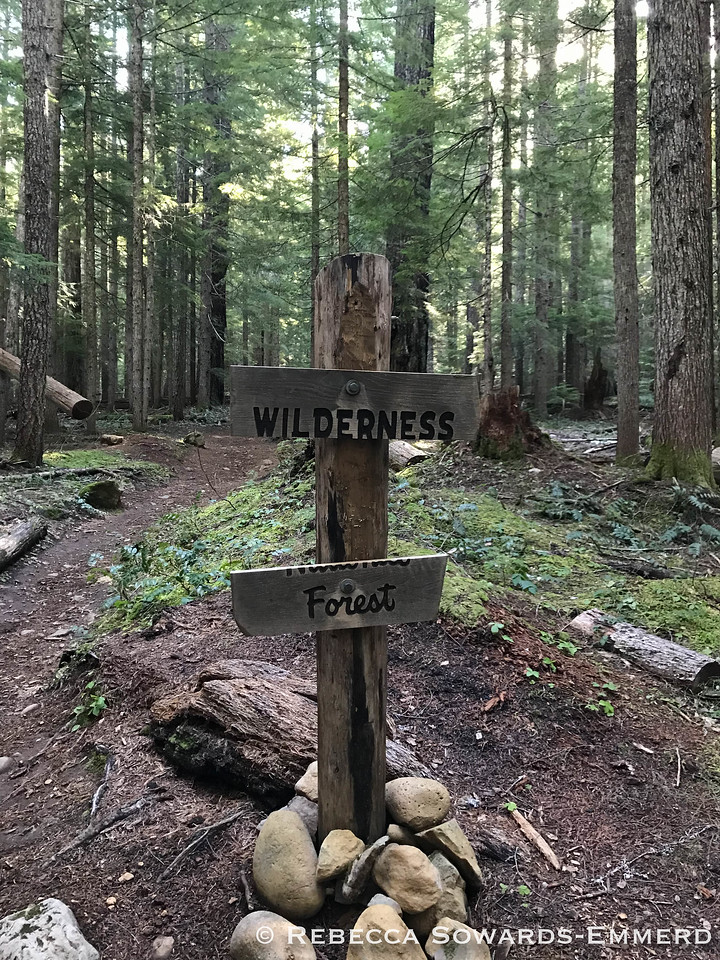 Older wilderness sign.