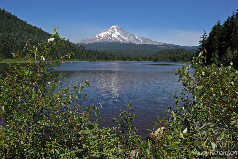 Mt. Hood View from banks of Trillium Lake