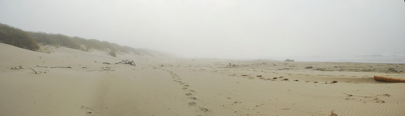 A foggy beach scene panorama