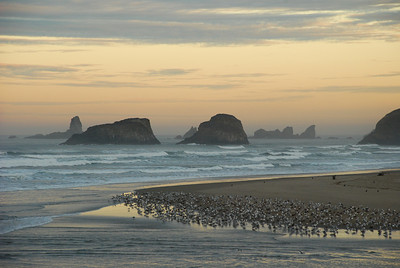 Evening view from Cannon Beach