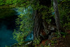 KateThomasKeown McKenzie River Blue_DSC9041 copy