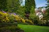 Spring flower bushes and shrubs in Washington Park, Portland, Oregon, USA.