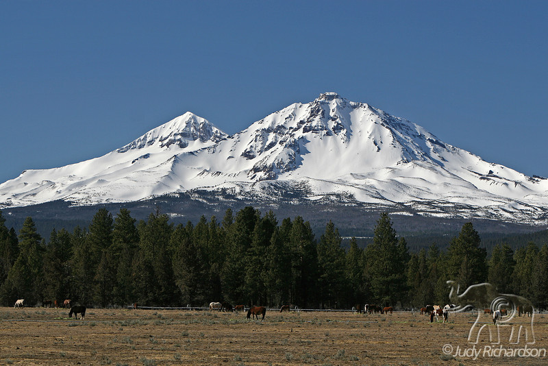 Middle and North Sister with horse pasture land