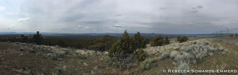 West facing panorama from the summit of Green Mountain. Distant snowy peaks are the central oregon Cascades.