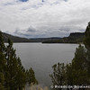 After Taylor Butte I drove along the Crooked River below Prineville Reservoir