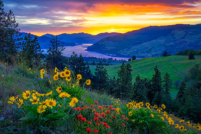 Columbia Gorge Spring Magic