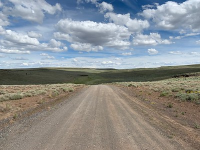 Hart Mountain is in the middle of nowhere, and we enjoyed driving this road to find antelope with no one else in sight.