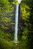 Latourell Falls in the Columbia River Gorge, Oregon, USA.